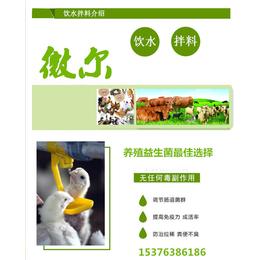 禽用益生菌家禽养殖专用微生态制剂
