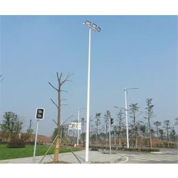 合肥路灯-农村路灯-安徽普烁光电(优质商家)