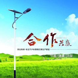 太阳能灯 加光板6米 热镀锌喷塑 河北利祥厂家直销