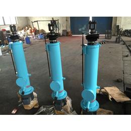 敦实的DYTZ5000-750电液推杆
