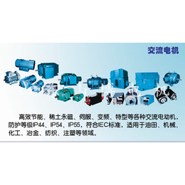 潮州永磁电机-稀土永磁电机-山博电机(优质商家)