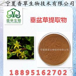 垂盆草提取物 天然植物提取原料现货1kg起包邮 垂盆草浸膏粉缩略图