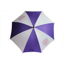 哪里能够做广告伞,广东广告伞,雨邦伞业质量保证缩略图