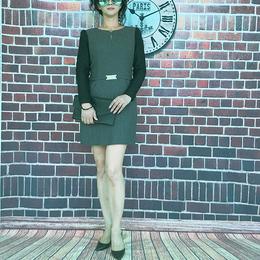 复古优雅气质女士及膝一步裙