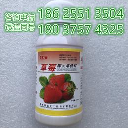 不软果不空心减少畸形果催红快就用安全的草莓膨大果快红