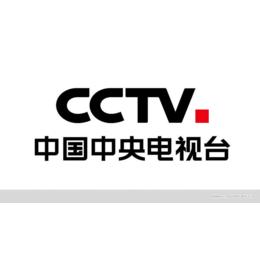CCTV广告多少钱一个月