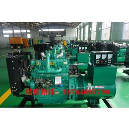 潍坊40千瓦柴油发电机组价格 参数  图片
