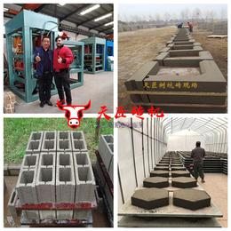 岳阳空心砖机-天匠空心砖机厂家-小型水泥空心砖机