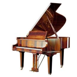 南昌立式88键教学钢琴 专业考级钢琴销售