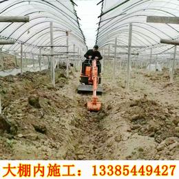 室内拆除小型挖掘机 园林绿化用小型挖掘机价格