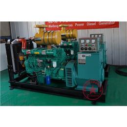 养殖专用技术成熟 品质卓越100千瓦潍坊柴油发电机组