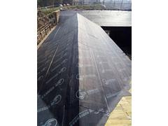 抚州文化中心木结构屋面