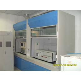 實驗室全鋼木通風柜,藥品柜器皿柜實驗室家具實驗臺廠家直銷