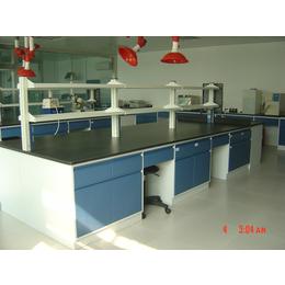 廠家生產檢驗實驗臺,實驗室藥品柜,全鋼木天儀實驗臺