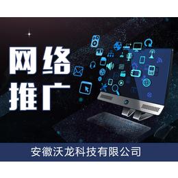 公司推广网站诊疗火17星天使