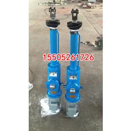 优质DYTZ700-300电液推杆选益通