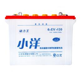6-EV-130型 旅游观光车新能源电池
