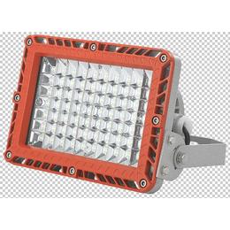 BZD188-01系列免维护LED泛光灯缩略图