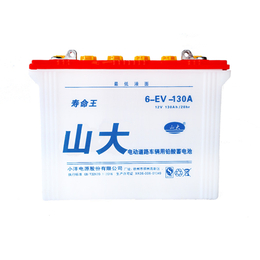 山大牌6-EV-130A新能源充电蓄电池热卖