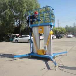 10米双柱铝合金升降平台液压升降机高空作业平台缩略图