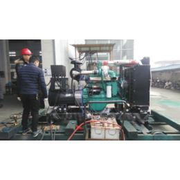 50KW鹅粪燃气发电机 养鹅场粪便污水气体发酵处理发电站