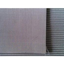 不锈钢席型网-河北瑞绿(图)-不锈钢席型网价格