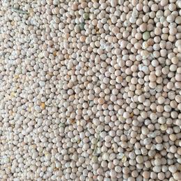 进口白豌豆 青岛 天津提货