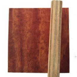 广西建筑模板批发厂家松桉结合木模板防腐耐用