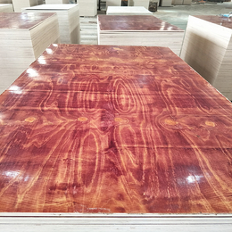 建筑木模板 两次压制成型 全整芯防水耐用 大量供应