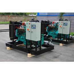 抚顺50KW牛粪气体发电站 奶牛养殖小区粪尿污水燃气发电机