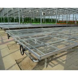 徐州花卉移动苗床-养花移动苗床-实现农业现代化的必备之选