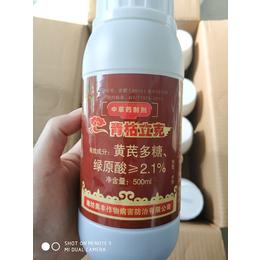 海南圣女果细菌性溃疡病新一代农药
