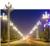 玉兰景观灯 定制生产 样式全4-6米 河北利祥供应缩略图1