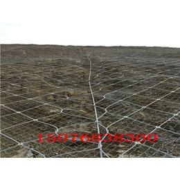 河北主动防护网缩略图