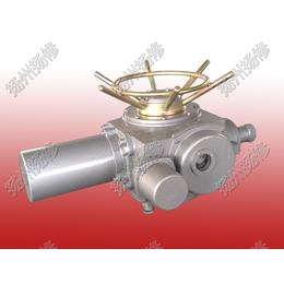 扬修电力户外普通型电动执行器DZW90-24W