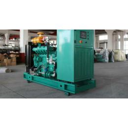 湖南50kw千瓦免维护燃气发电机组价格 养殖场污水气体发电机