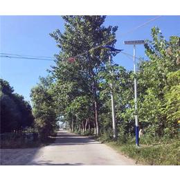 高杆太阳能路灯、合肥太阳能路灯、安徽普烁光电(查看)