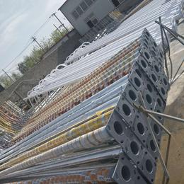 8米灯杆灯柱 热镀锌喷塑 不生锈防腐蚀 保定利祥供应全国