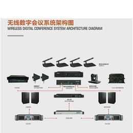 供应杰帕斯多功能数字会议系统数字视频会议系统表决系统