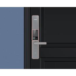 凯迪仕锁家用防盗门密码锁v5