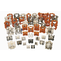 美国威尔顿P1 AAPPP FSS FS AFS隔膜泵