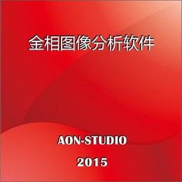 金相专业图像分析系统JX2015版金相自动评级软件现货供应