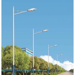 阿坝路灯、维加斯灯饰照明厂、路灯生产厂家