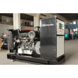 浙江养猪场80kw千瓦热回收燃气发电机 可配脱硫脱水系统