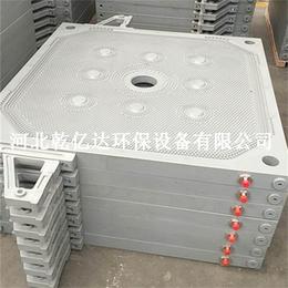 防渗漏滤板 厢式压滤机滤板  增强聚丙烯滤板