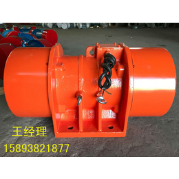 MVE90000-1惯性振动电机