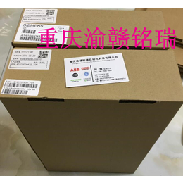 UPS电源A5E31321302