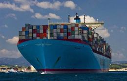 福建泉州到海南海口海运集装箱内贸运输