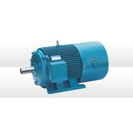 660v变频电机_山博电机(在线咨询)_绵阳变频电机