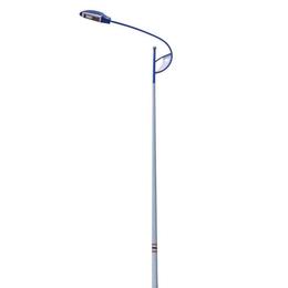 道路照明灯 镀锌喷塑 保质保量 河北利祥供应全国